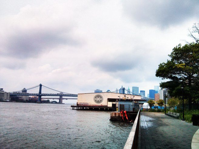 FrostWire Graffiti on a pier in the east river in New York City - street art #streetart
